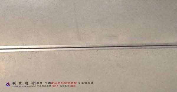 扁钢铠甲缝配1010不锈钢条地坪涨缩缝